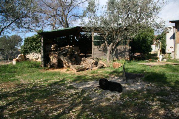 Istria places sanisio workshop