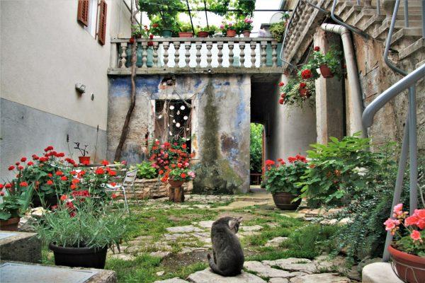 Istria places Fazana courtyard