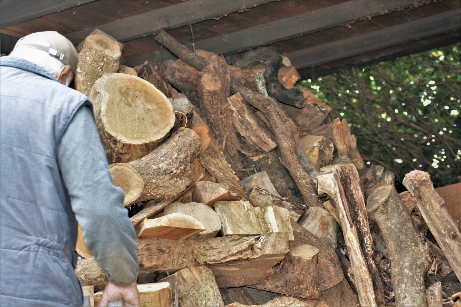 wood drying raw wooden material