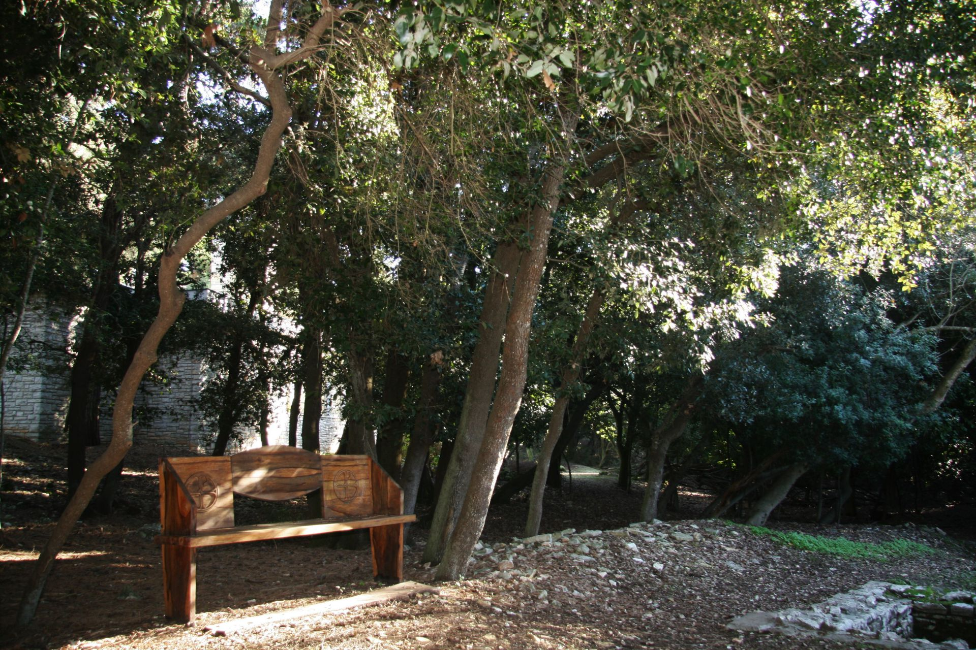 public areas Brijuni national park basilica Istria holm oak wood