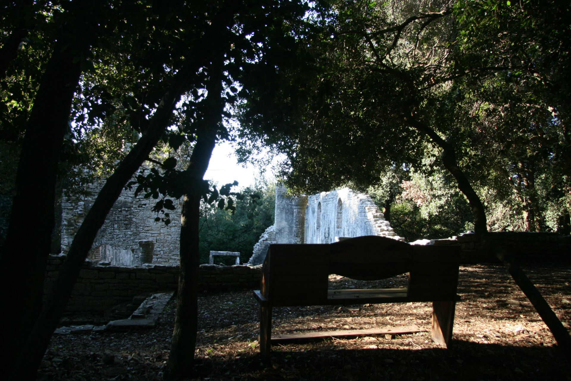 public areas Brijuni national park basilica Istria holm oak wood view