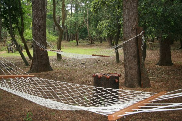 public areas Brijuni national park hammocks
