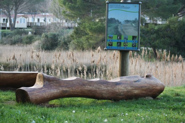 public areas Valbandon holm oak bench